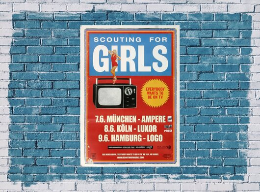 Scouting for Girls - Everybody, Tour 2010 - Konzertplakat